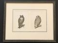Owls-Antique-Print
