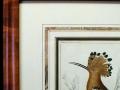 bird antique framed print