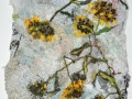shullenberger-Dried-Yellow-